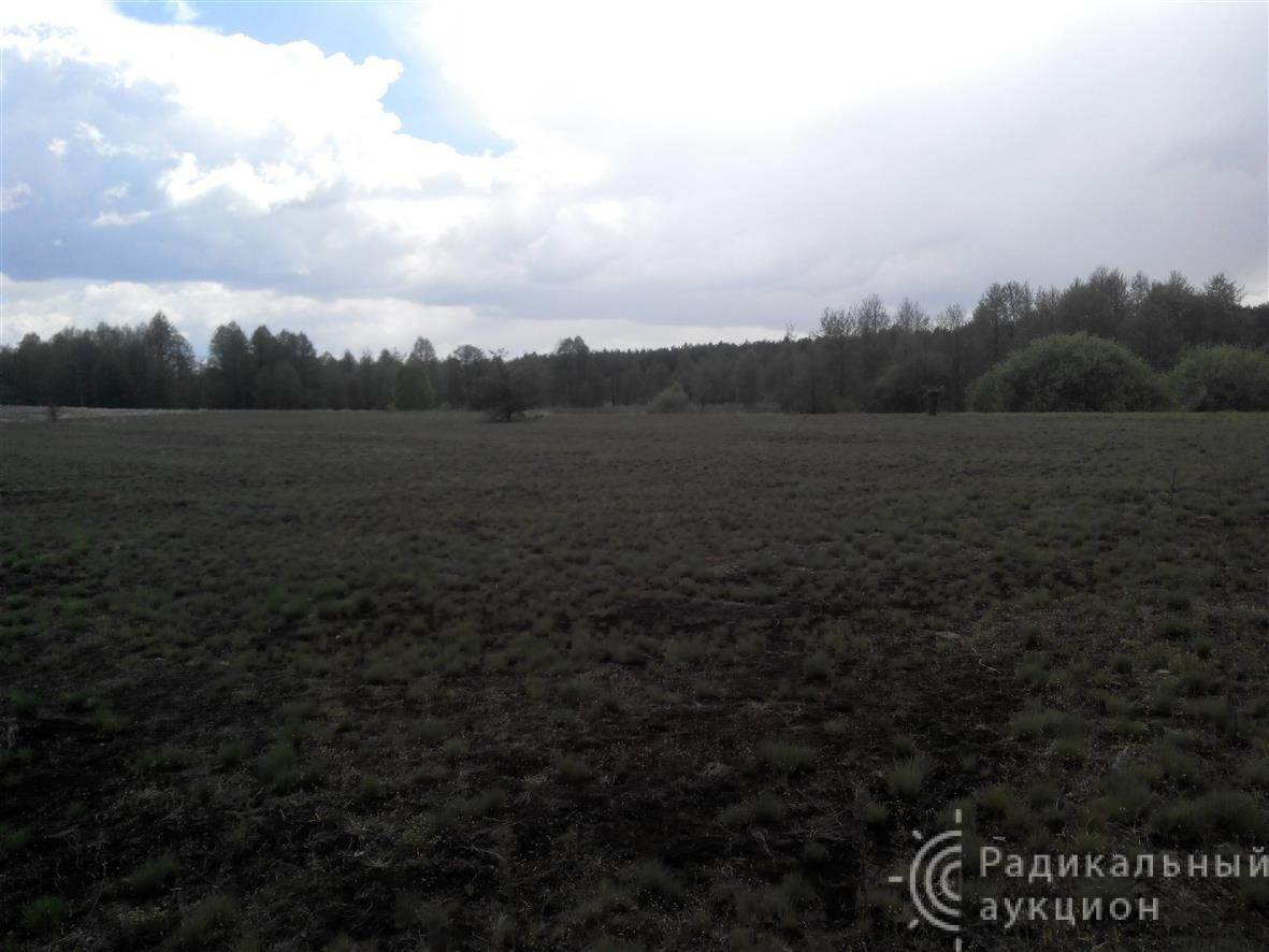 Земля, сельское хозяйство, 12 га