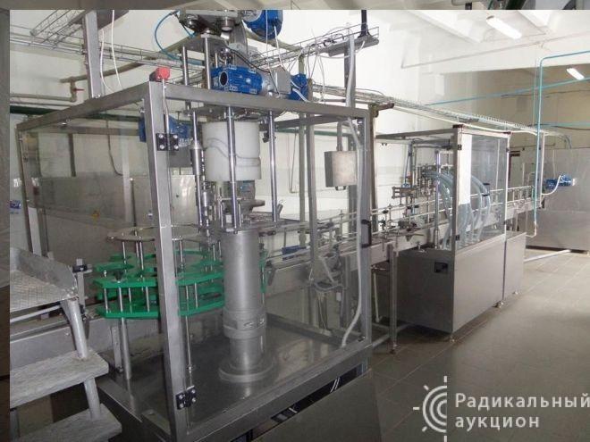 Бизнес, пищевая промышленность, с 2004