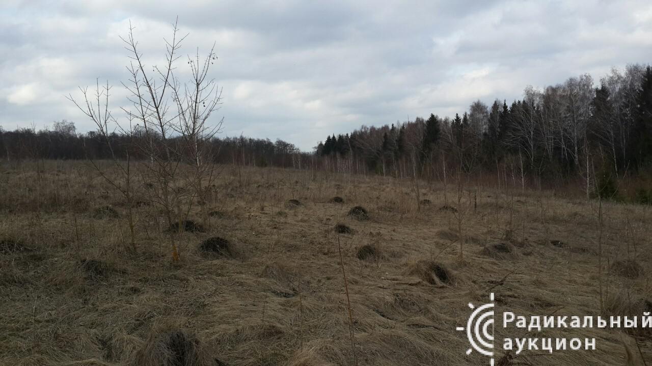 Земля, сельское хозяйство, 10,66 га